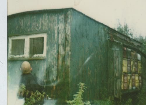 Oldschool Polaroid